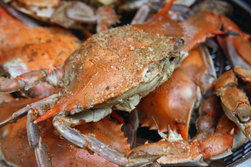 Gestoomde krabben in pot stock foto's