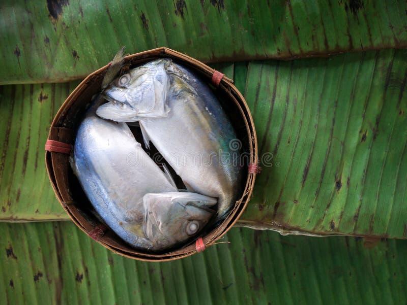 Gestoomde makreel in de mand bamboe royalty-vrije stock foto
