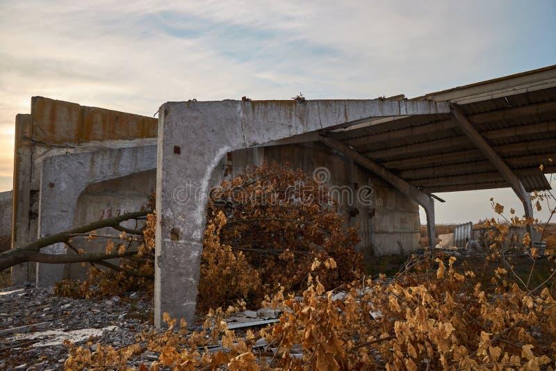 Gestorven bomen en de ruïnes van een bijna verwoest opslagcomplex royalty-vrije stock fotografie
