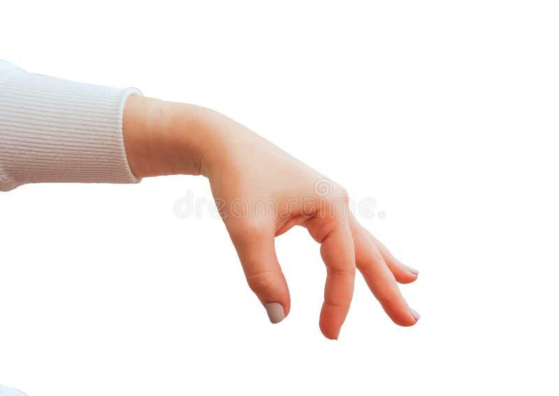 Gestos de mão caucasianos fêmeas múltiplos isolados sobre o fundo branco fotografia de stock royalty free
