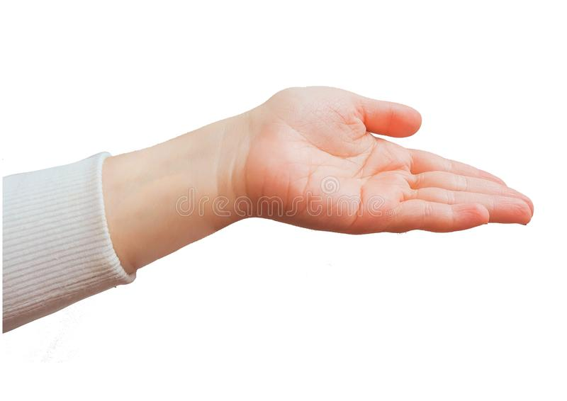 Gestos de mão caucasianos fêmeas múltiplos isolados sobre o fundo branco imagem de stock