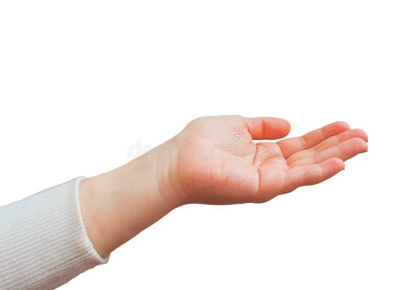 Gestos de mão caucasianos fêmeas múltiplos isolados sobre o fundo branco foto de stock royalty free