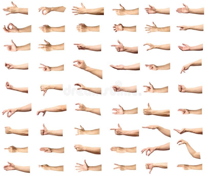 Gestos de mão caucasianos masculinos múltiplos isolados sobre os vagabundos brancos imagem de stock royalty free