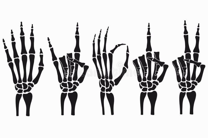 Gestos de mão de esqueleto ajustados Coleção de sinais desenhados à mão dos ossos Vetor ilustração stock