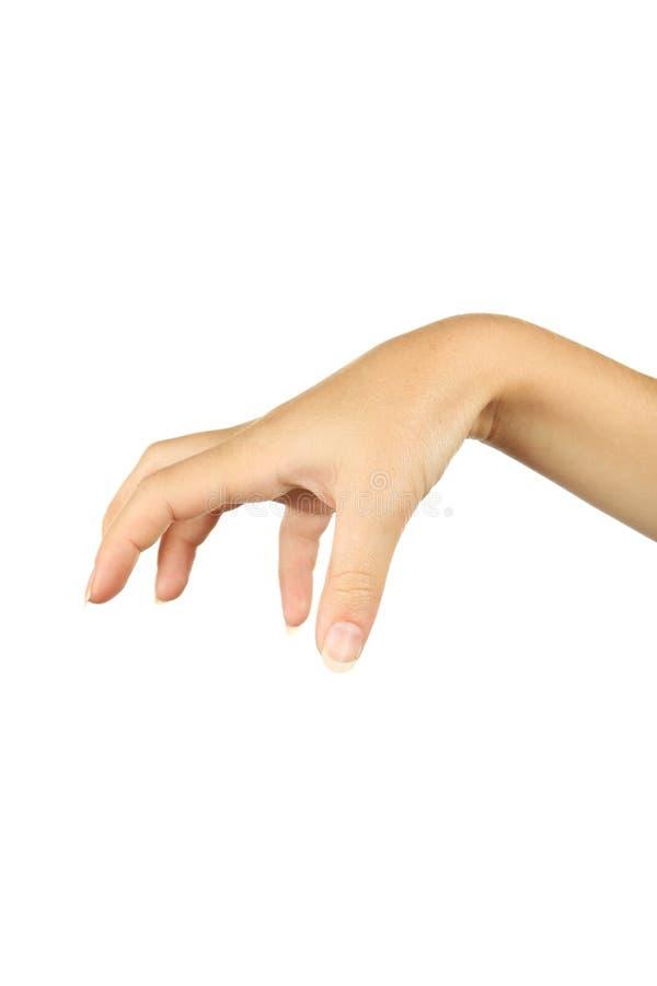Gestos de mano femeninos, cierre para arriba foto de archivo libre de regalías