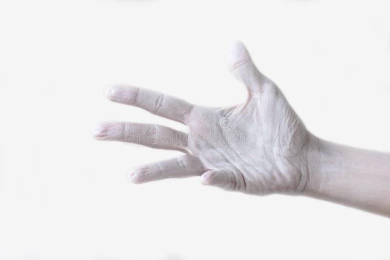 Gestos, posições e expressões com mãos e os dedos fêmeas fotos de stock royalty free