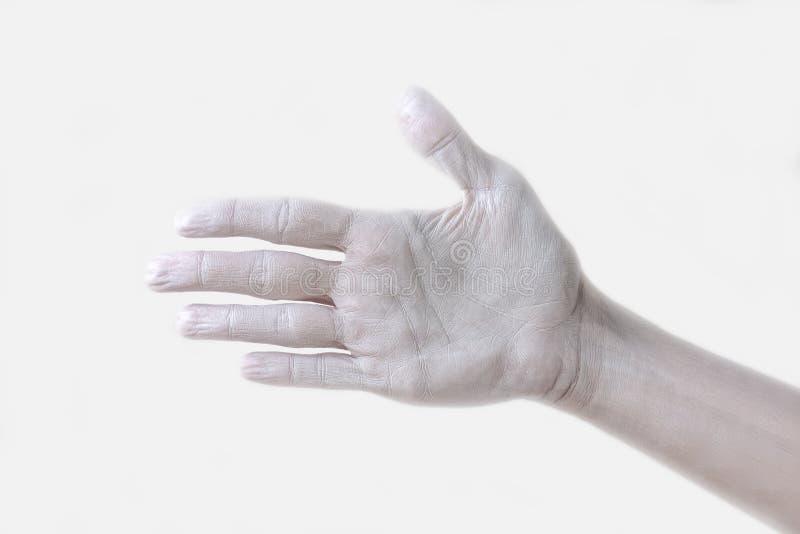 Gestos, posiciones y expresiones con las manos y los fingeres femeninos foto de archivo