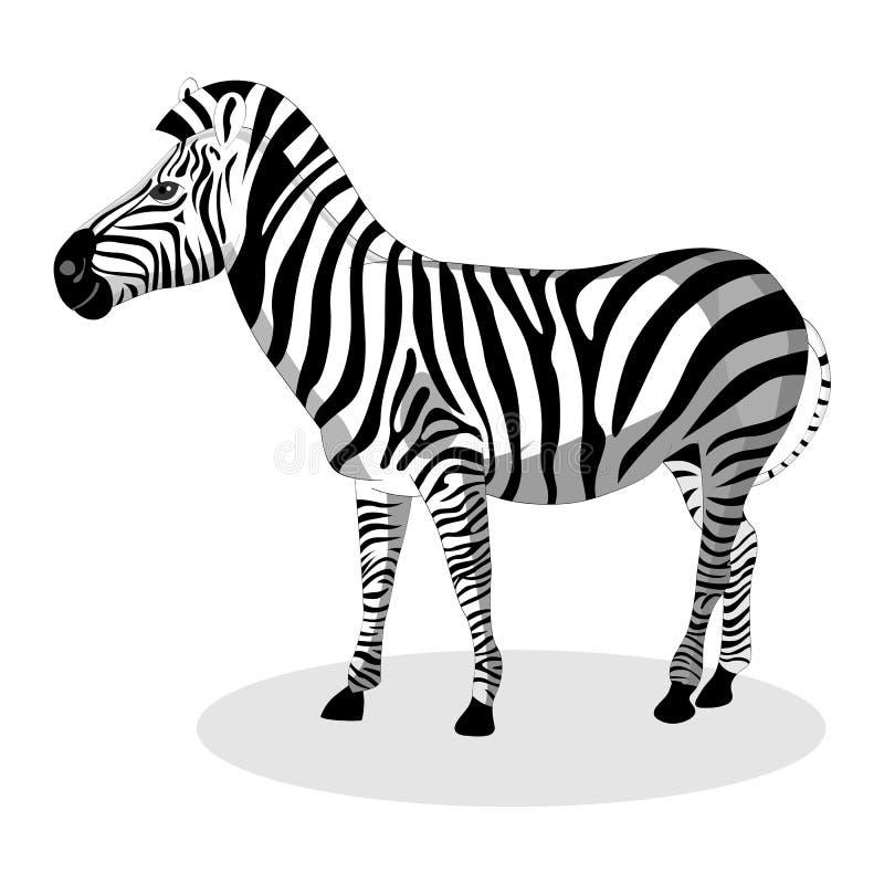 Gestreept vector illustratie