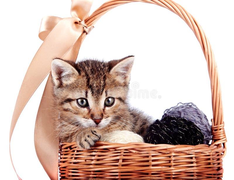 Gestreept katje in een mand met wollen ballen stock afbeeldingen