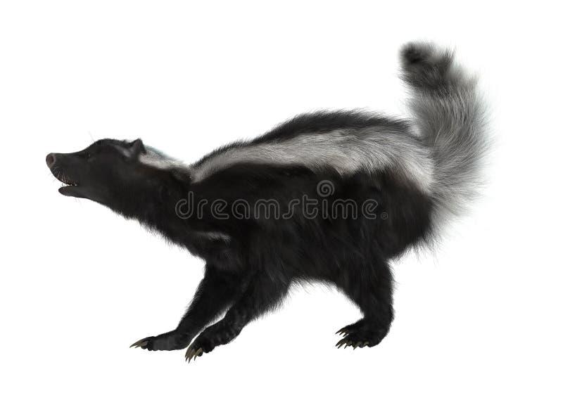 Gestreept Stinkdier op Wit vector illustratie