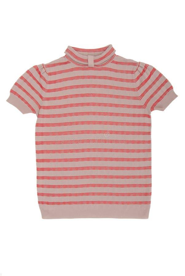 Download Gestreepte blouse stock afbeelding. Afbeelding bestaande uit stripy - 39112091