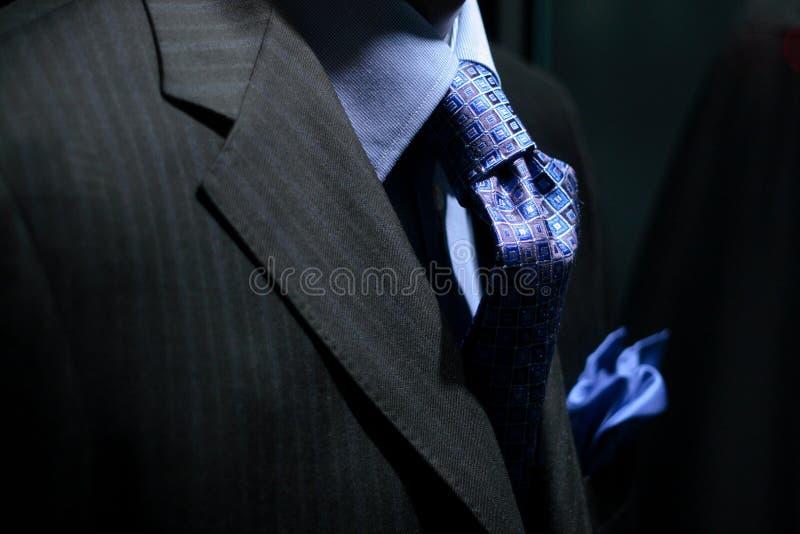 Gestreifte Jacke mit blauem Hemd, Gleichheit u. Taschentuch lizenzfreies stockfoto