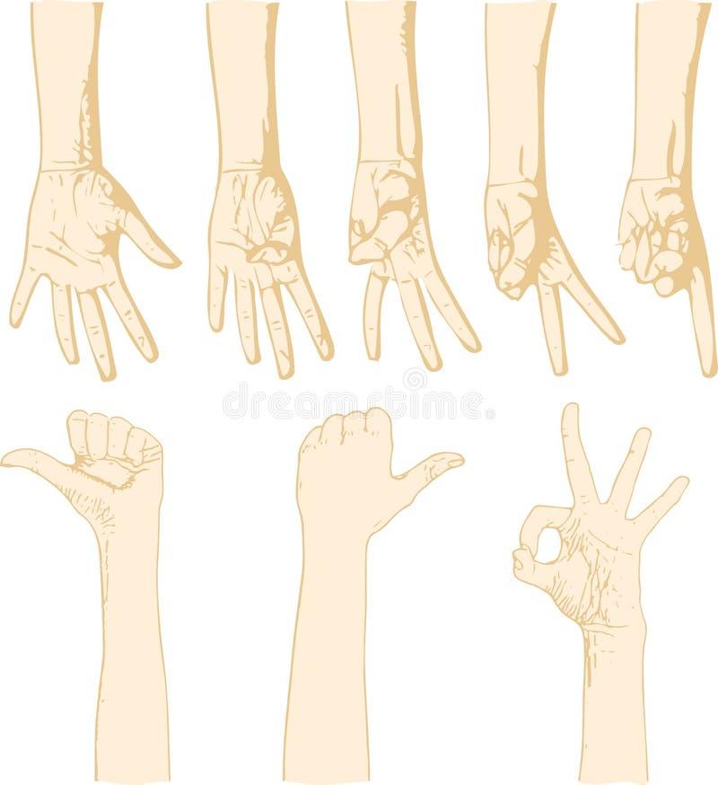 Download Gesturing hands stock vector. Image of skin, show, idea - 11034626