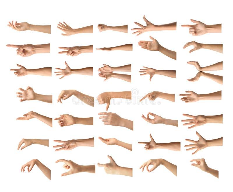 Gesturing le mani femminili su fondo bianco fotografia stock