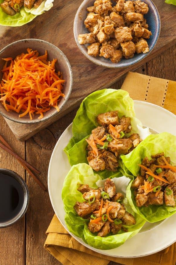 Gesunde asiatische Hühnerkopfsalat-Verpackung lizenzfreie stockbilder