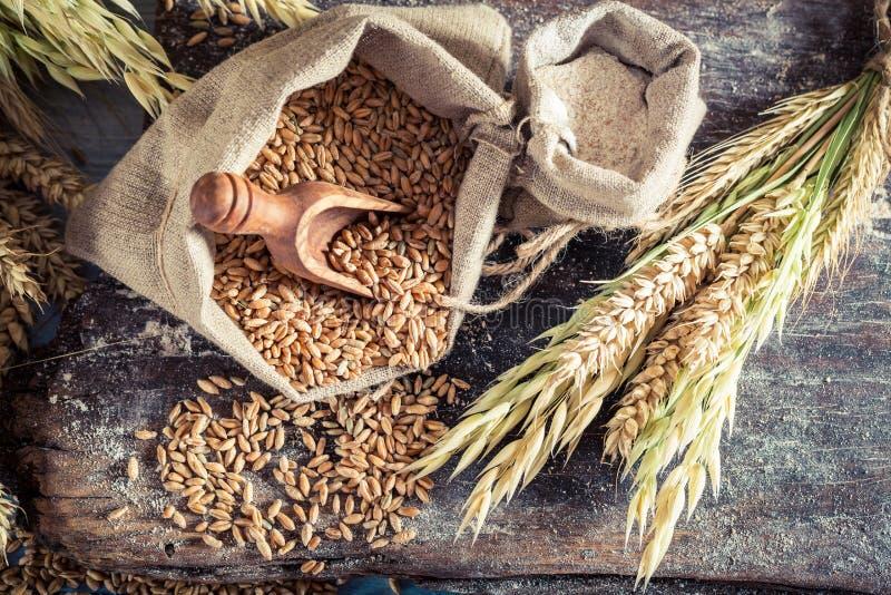 Gesunde Bestandteile für Rollen und Brot mit ganzen Körnern stockbilder