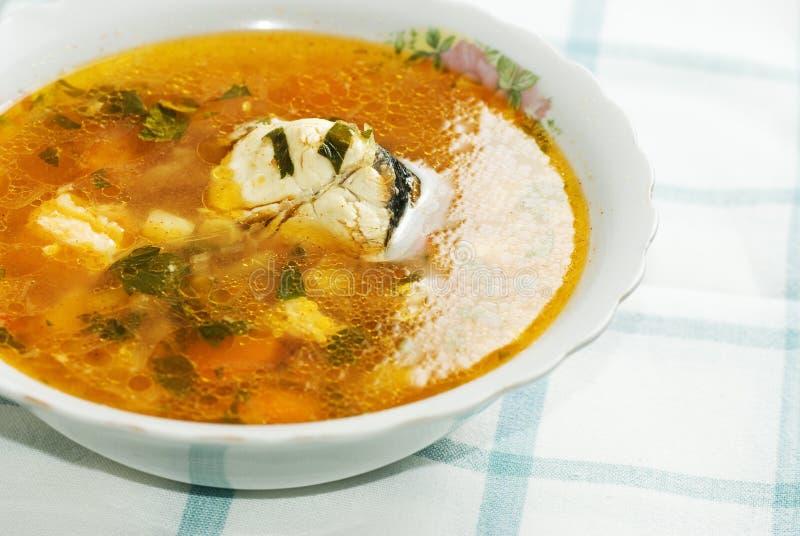 Gesunde Fischsuppe lizenzfreies stockfoto