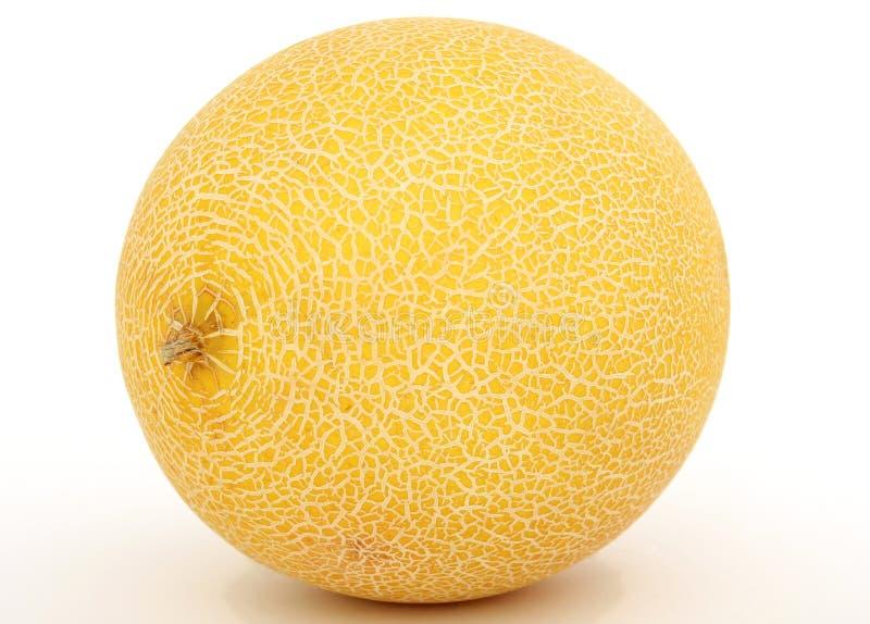 Gesunde Fruchtmelone lizenzfreie stockfotografie