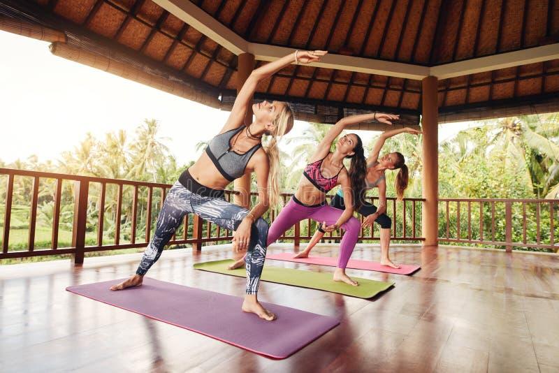 Gesunde Gruppe des weiblichen Trainierens an der Yogaklasse lizenzfreie stockfotografie