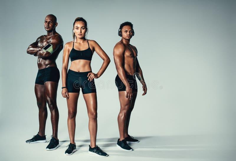 Gesunde junge Männer und Frau mit muskulöser Gestalt lizenzfreie stockfotos