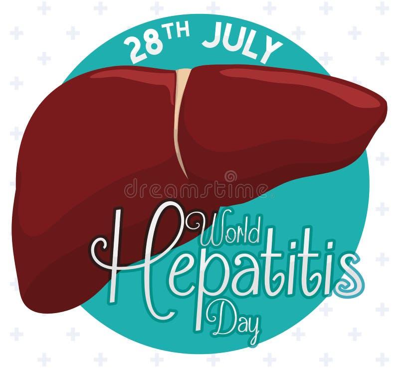 Gesunde Leber mit Feier-Datum des Hepatitis-Tages, Vektor-Illustration stock abbildung