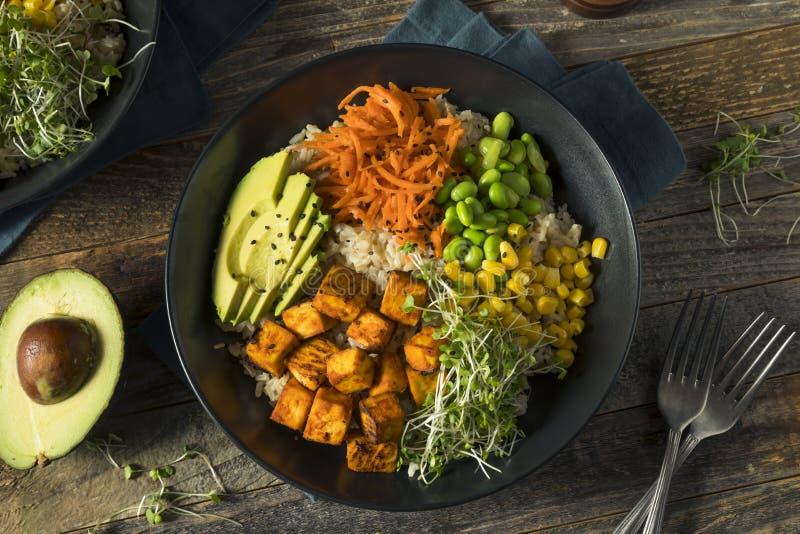 Gesunde organische Tofu-und Reis-Buddha-Schüssel lizenzfreies stockfoto