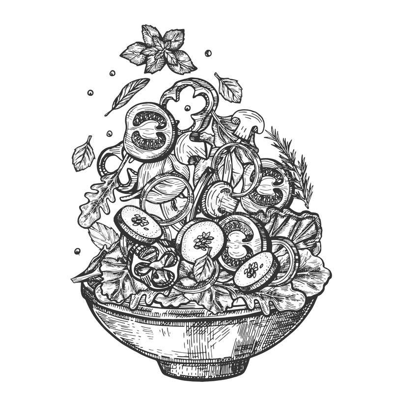 Gesunde Salatbestandteile des vertikalen Fliegens im Teller stock abbildung