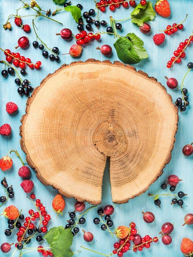 Gesunde Sommergarten-Beerenvielzahl Schwarze und rote Johannisbeere, Stachelbeere, rasberry, Erdbeere, tadellose Blätter auf Blau lizenzfreie stockbilder