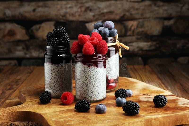 Gesunder Frühstück chia Pudding mit Kiwi und Granola in Glaso lizenzfreie stockbilder