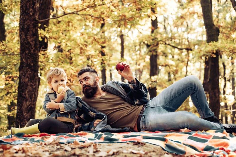 Gesunder Imbi? Saftiger Apfel des Bisses Vierk?pfige Familie im Herbstwald Bärtiger Vati des Hippies mit Sohn Zeit im Waldgroben  lizenzfreie stockbilder