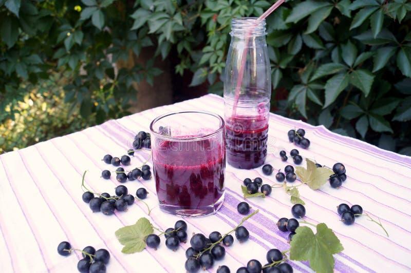 Gesunder Smoothie von der Beere des Vitamingetränks der schwarzen Johannisbeere, Sommernachtischkonzept lizenzfreie stockfotografie