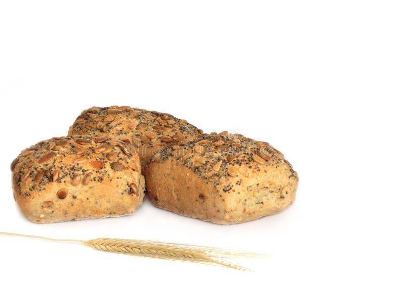 Gesundes Brot Rolls lizenzfreie stockfotos