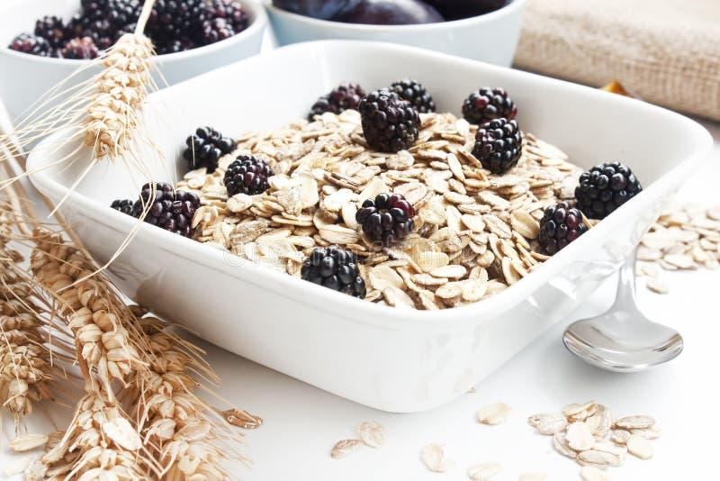 Gesundes Frühstück mit Brombeeren stockfotografie