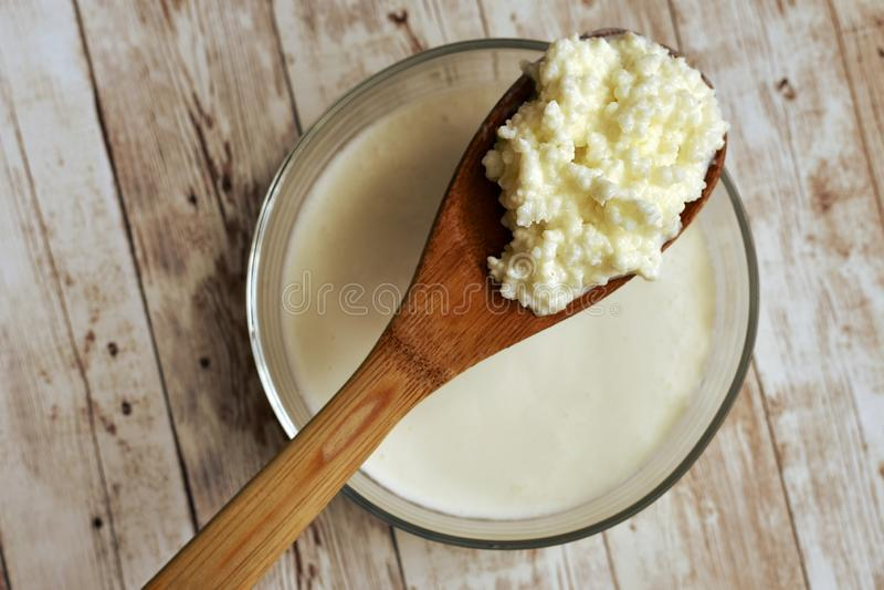 Gesundes gegorenes Nahrungsmittelkonzept Kefir probiotic lizenzfreies stockbild
