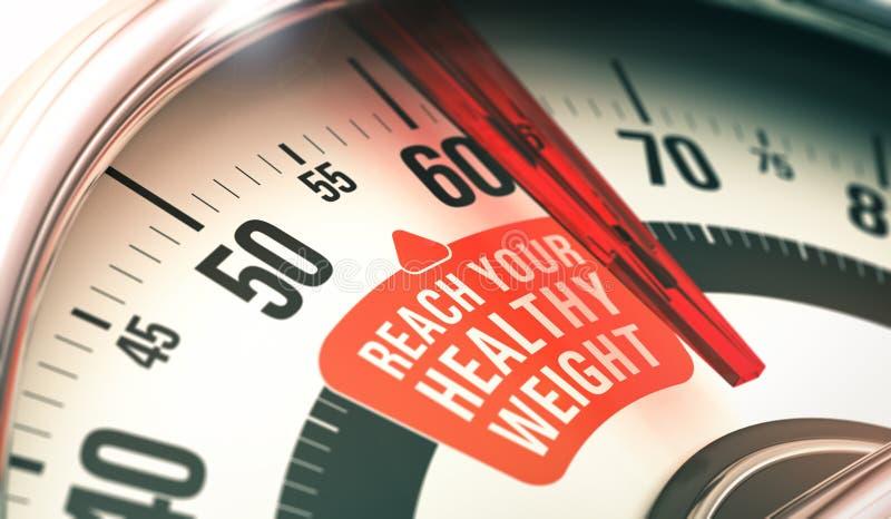 Gesundes Gewicht vektor abbildung