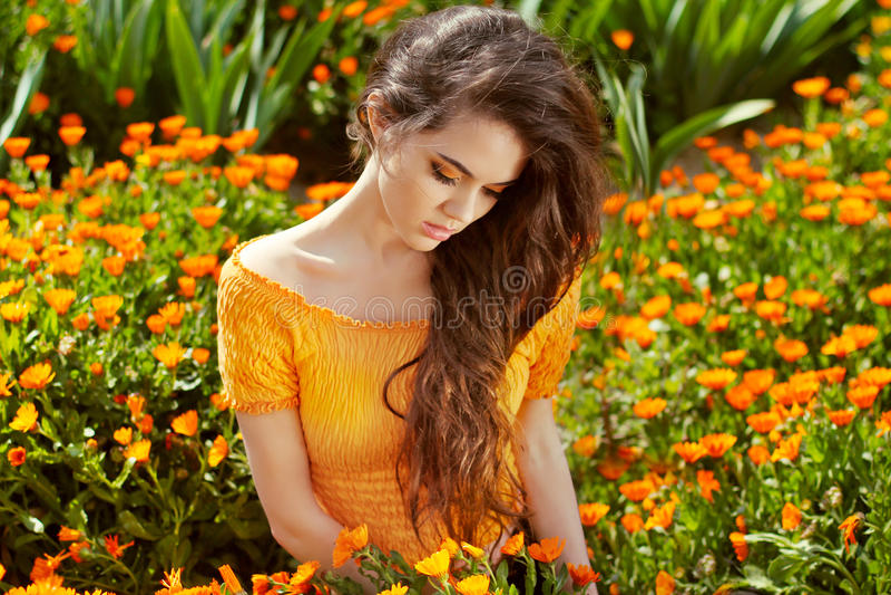 Gesundes langes gelocktes Haar. Schöne Brunette-Frau über Ringelblume lizenzfreie stockfotografie