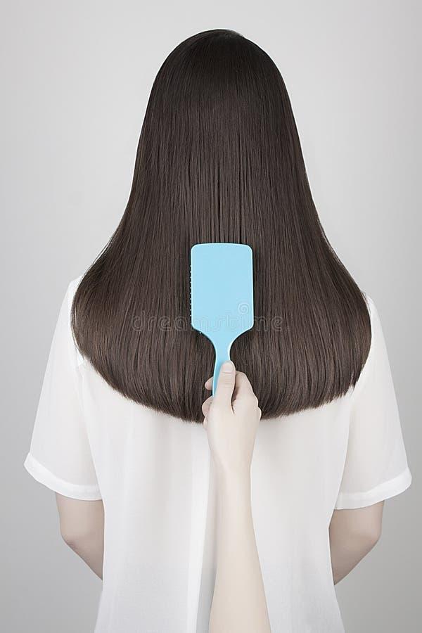 Gesundes langes Haar Zurück von der jungen Frau stockfoto