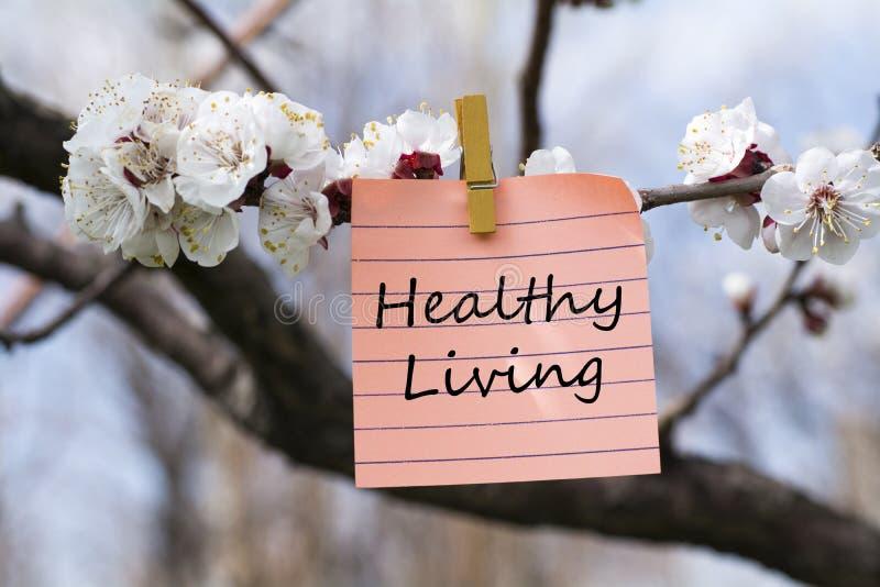 Gesundes Leben in der Notiz lizenzfreies stockfoto