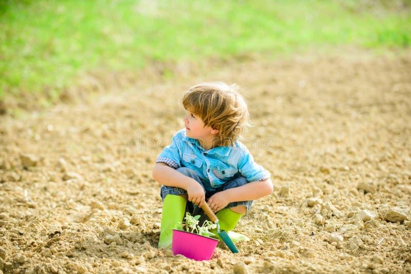 Gesundheit und ?kologie kleines Kind, das eine Blume pflanzt Gl?cklicher Kinderg?rtner Botanische Arbeitskraft Ansicht zum Welter stockfoto