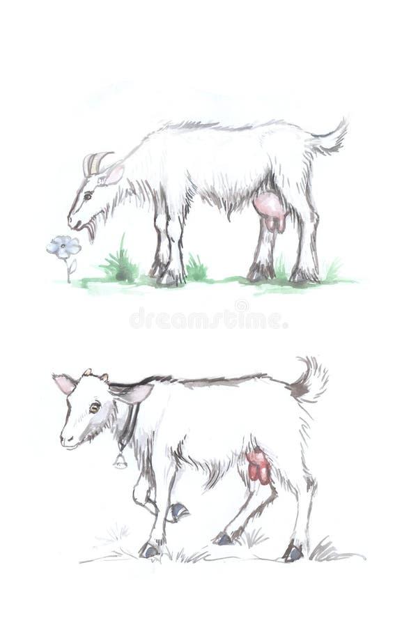 Get år för vattenfärgattraktionzodiak stock illustrationer
