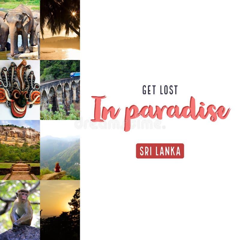 Get perdeu no paraíso ilustração stock
