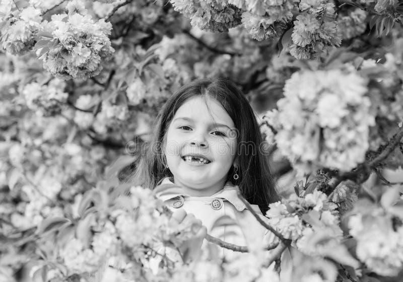 Get rid of seasonal allergy. Girl enjoying floral aroma. Pollen allergy concept. Kid on pink flowers sakura tree. Background. Child enjoy life without allergy royalty free stock photos