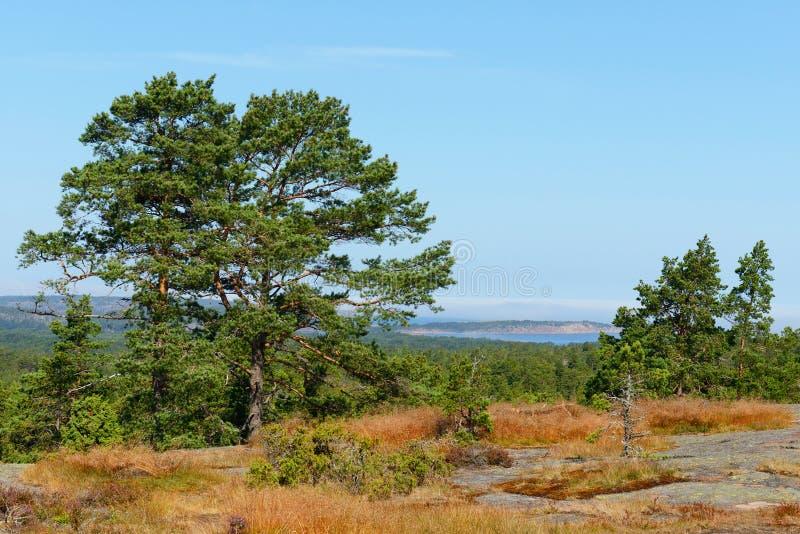 Geta, νησιά Aland, Φινλανδία στοκ εικόνα με δικαίωμα ελεύθερης χρήσης