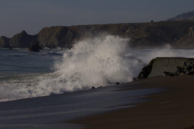 Geten vaggar stranden - nordvästliga Sonoma County, Kalifornien, är munnen av den ryska floden fotografering för bildbyråer