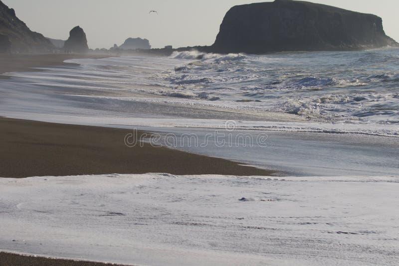 Geten vaggar stranden - nordvästliga Sonoma County, Kalifornien, är munnen av den ryska floden royaltyfria foton