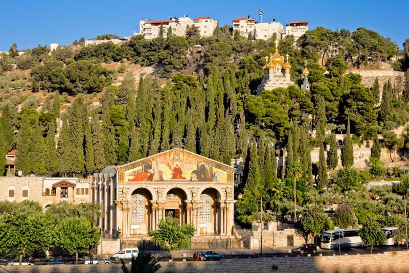 Gethsemane och nationerna för kyrka allra i Jerusalem royaltyfria bilder