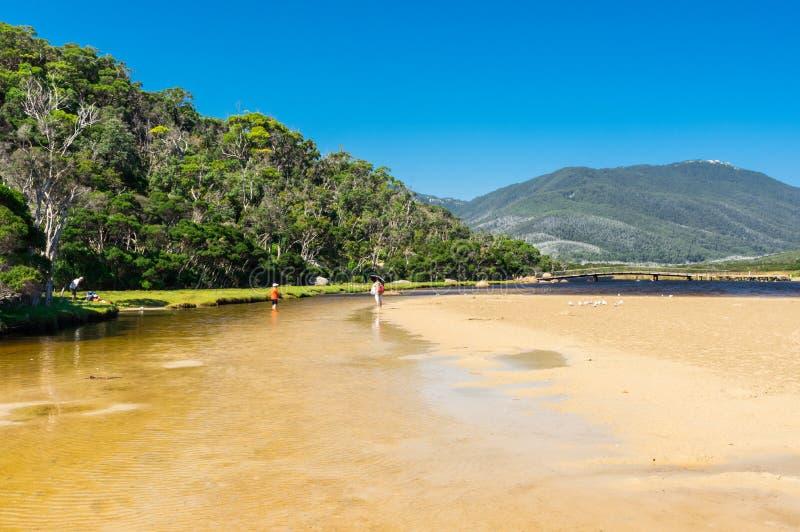 Getijderivier in de zuidelijke sectie van Wilsons-Voorgebergte Nationaal Park in Gippsland, Australië royalty-vrije stock foto