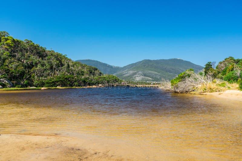 Getijderivier in de zuidelijke sectie van Wilsons-Voorgebergte Nationaal Park in Gippsland, Australië stock foto