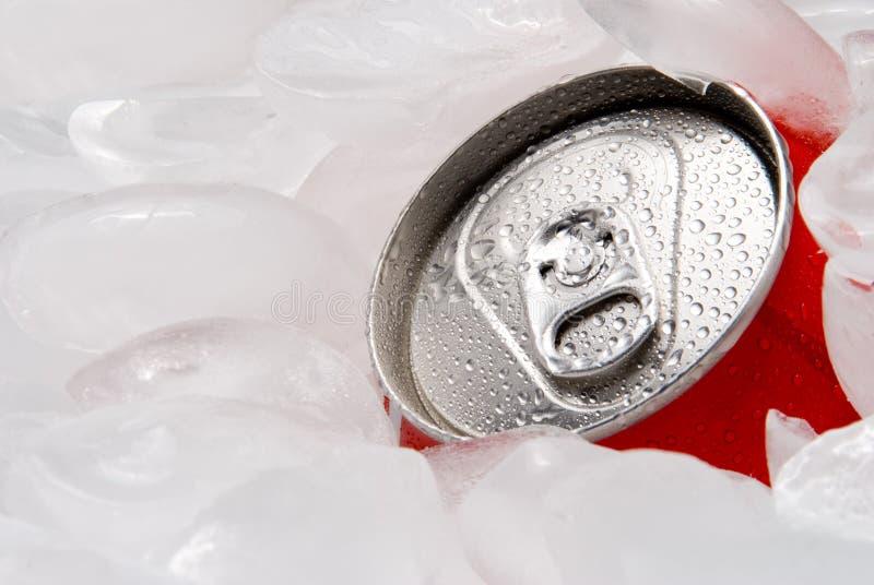 Getränk kann im Eis lizenzfreie stockfotografie