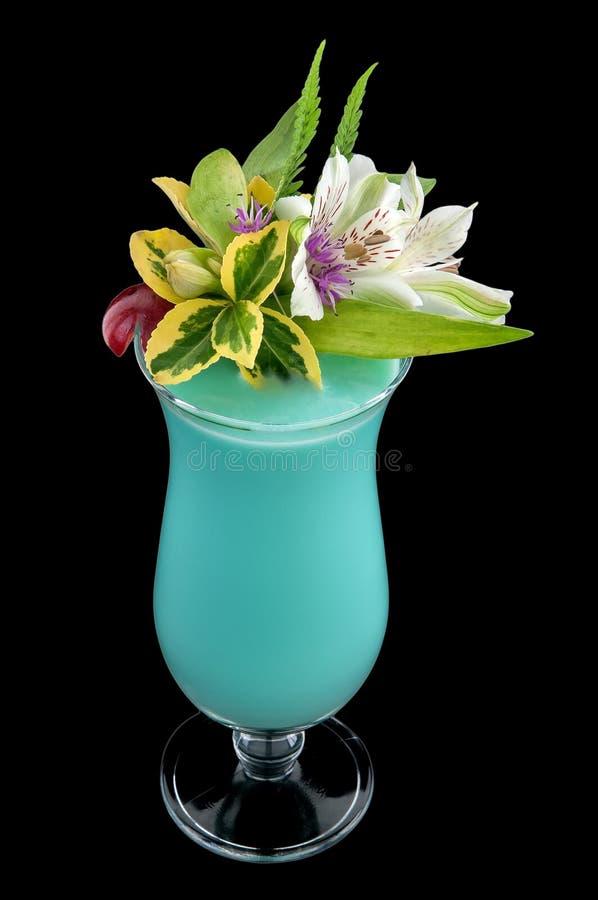 Getränkgetränk, Cocktail mit Blume,   stockfotografie